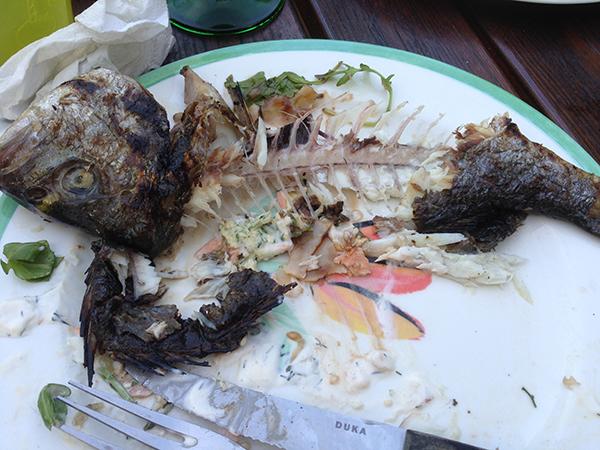 grillahelfisk