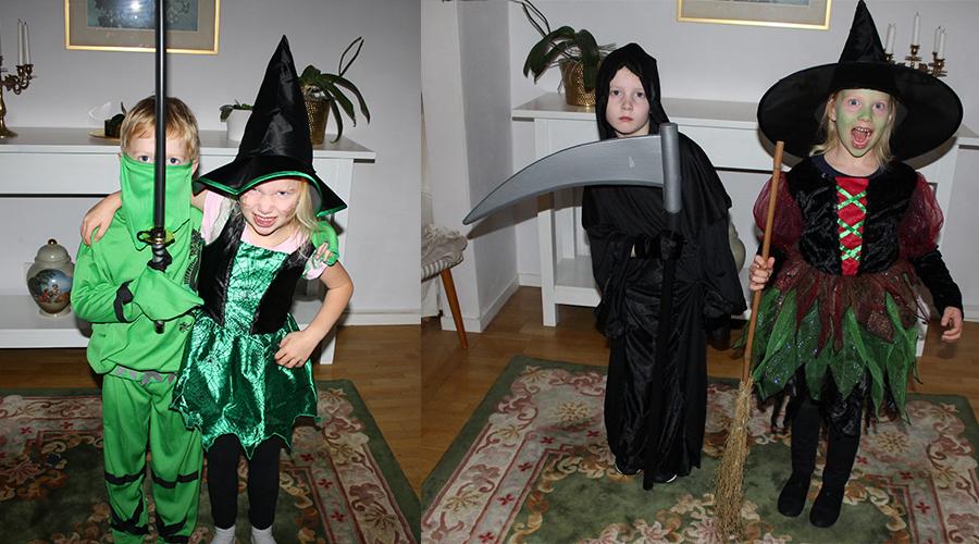 partykungen halloween barn